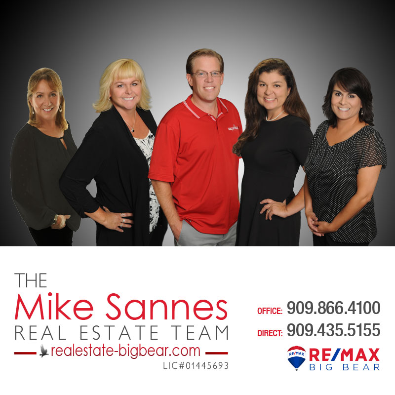 The Mike Sannes Real Estate Team